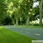 طريق جانبي حديقة بادن بادن