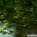 نهر حديقة بادن بادن